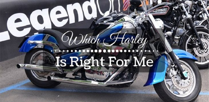 How To Know Which Harley